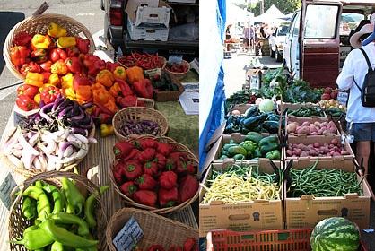Organic Farm Market Produce
