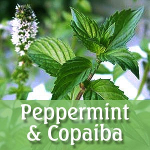 image with peppermint leaf