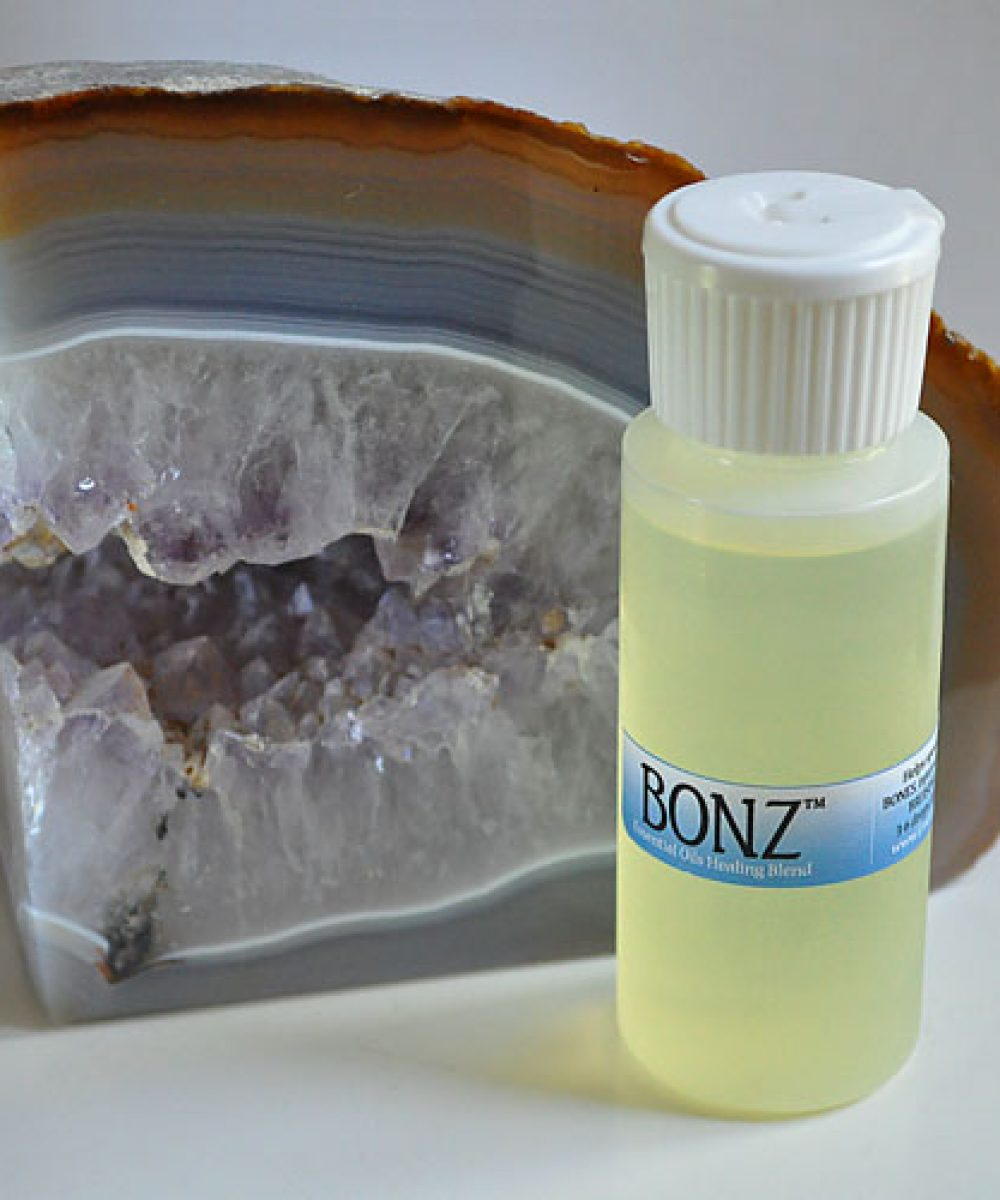 eBONZ-500